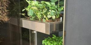 Come fare l'orto in casa: quando il km 0 incontra design e tecnologia