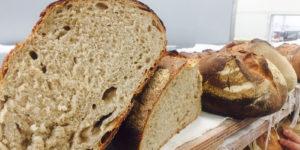Come si fa il Pane di una volta? La ricetta